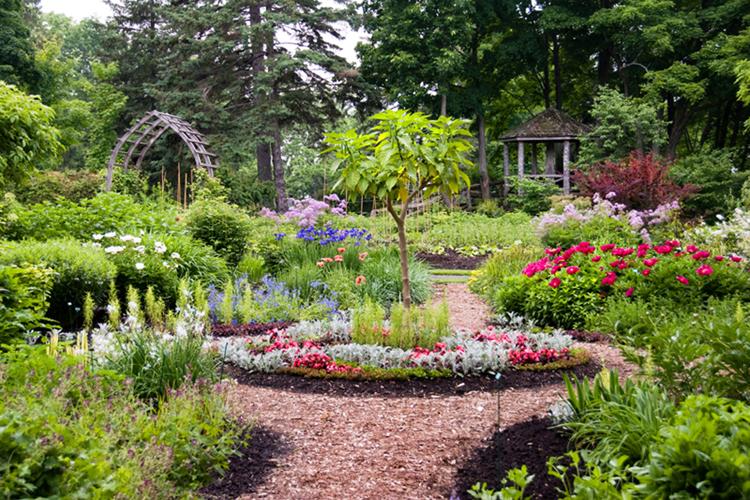 Imagenes de jardines en caricatura imagui - Cosas para jardin ...