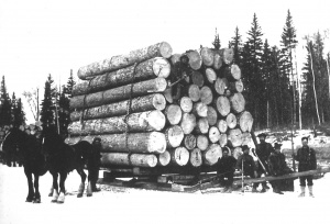 The lumber industry reached its peak during the second half of the 19th century.