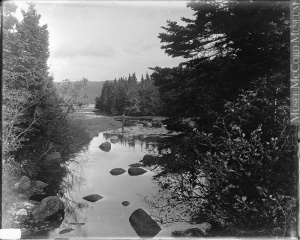 A brook near Baie Sainte-Anne, NS, circa 1915 (?)