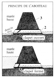 The mechanics of an Aboiteau-style dike and sluice