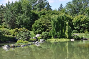 Pond at the Botanical Garden