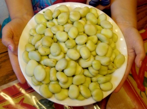 Freshly shelled gourgane beans ready for cooking