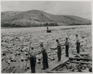 Log drivers on the Saint John River in 1957