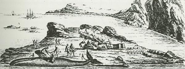 Illustration représentant un établissement côtier destiné à la fonte des graisses de baleines.