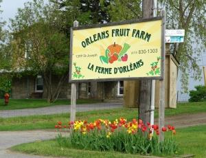 Orleans Fruit Farm, Ottawa, Ontario