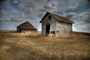 An old farmstead near Saint Paul, Alberta, 2008