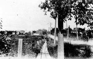 Montreal Road in Eastview (now Quartier Vanier, Ottawa), circa 1900