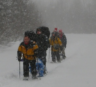 Excursion hivernale dans le parc national de la Gaspésie